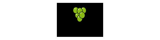 Zväz vinohradníkov a vinárov Slovenska